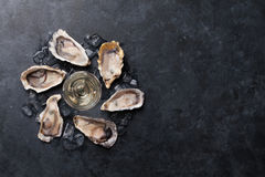 Oysters and wine Royalty Free Stock Image
