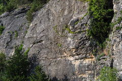 Ozark Cliffs och trädlandskap Arkivbild