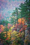 Ozark Color. Fall color in an Arkansas valley overlooked by a bluff of pine trees stock image