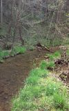 Ozark stream. Fresh water stream in the Ozarks Stock Image