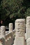 Ozdobni bielu marmuru filary fotografia royalty free