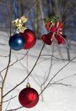 ozdoby świąteczne drzew obraz royalty free