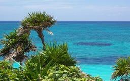Ozean Lizenzfreie Stockfotos
