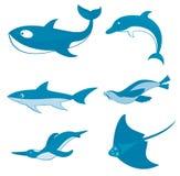 Ozean-Geschöpfe Stockbild