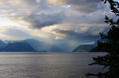 Ozean leben11 Lizenzfreie Stockfotos