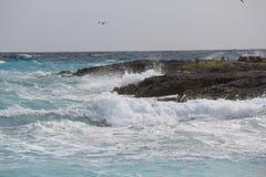Ozean Sprary, das gegen die Felsen bricht Lizenzfreie Stockbilder