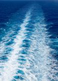 Ozean-Spur Lizenzfreies Stockbild