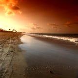 Ozean sunrice Lizenzfreie Stockbilder