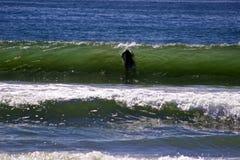 Ozean-Surfer Lizenzfreie Stockfotos