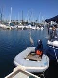 Ozean und Vogel Lizenzfreies Stockfoto