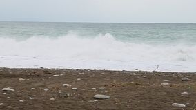 Ozean wavw Zeitlupe stürmisch stock footage