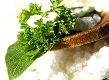 Ozeanisches Salz mit Bucht- und Petersilienblatt stockbild