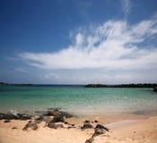 Ozeanküste Stockfotos