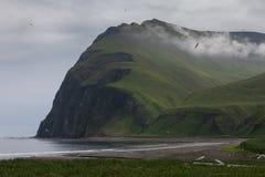 Ozeanküste, Kommandant Islands lizenzfreie stockfotos