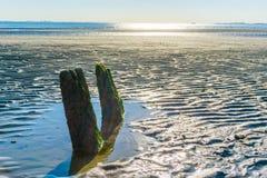 Ozeanlandschaft 2 schaukelt in Linie auf dem Strand Stockbilder
