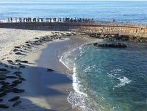Ozeanparadies Lizenzfreies Stockfoto