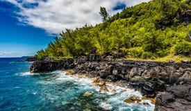 Ozeanseite von La Reunion Island Stockfoto