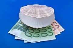 Ozeanshell und -euro Lizenzfreie Stockfotos