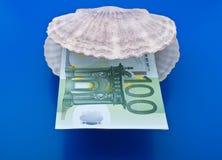 Ozeanshell und -euro Lizenzfreies Stockfoto