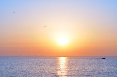 Ozeansonnenaufgang und -vögel Stockfotografie