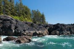 Ozeanufer mit Wald Stockfoto