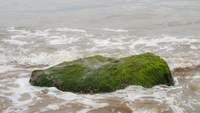 Ozeanwasserwellen, die oben gegen einen moosigen grünen Felsen spritzen Stockbild