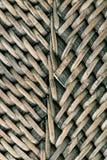 Łozinowy drewno ilustracja wektor