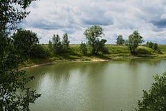 Ozjorki Árboles en la orilla foto de archivo