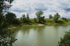 Ozjorki Bäume auf dem Ufer Stockfoto