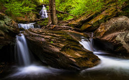 Ozone Falls and cascades on Kitchen Creek, in Glen Leigh, Ricketts Glen State Park Royalty Free Stock Photos