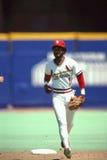 Ozzie Smith St Louis Cardinals Στοκ εικόνες με δικαίωμα ελεύθερης χρήσης