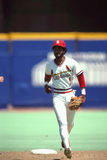 Ozzie Smith St. Louis Cardinals Royalty Free Stock Images