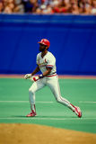 Ozzie Smith St. Louis Cardinals Stock Photos