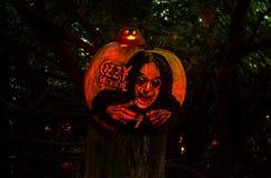 Ozzy Osbourne, Rzeźbiący Dyniowy uznanie zdjęcie royalty free