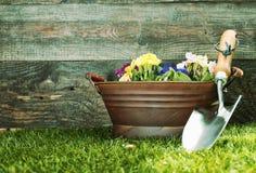 Pá de pedreiro de jardim pequena com flores coloridas Fotografia de Stock Royalty Free