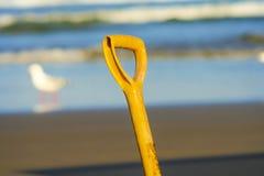 Pá na praia com gaivota Fotografia de Stock Royalty Free