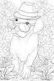 Página adulta del colorante un pequeño perro lindo con los vidrios y el sombrero para relajarse Línea Art Style Illustration Imagenes de archivo