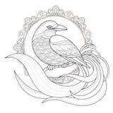 Página agraciada del colorante del pájaro libre illustration