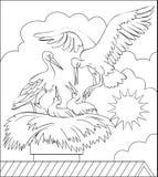 Página con el ejemplo blanco y negro de la familia de la cigüeña en la jerarquía para colorear Foto de archivo