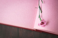 Página cor-de-rosa do álbum de fotografias do vintage com única flor Imagens de Stock