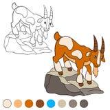 Página da coloração Colora-me: cabra Cabra bonito Imagens de Stock