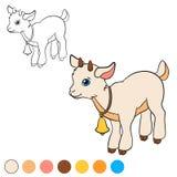 Página da coloração Colora-me: cabra Cabra bonito pequena do bebê Fotografia de Stock Royalty Free