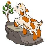 Página da coloração Colora-me: cabra Cabra bonito pequena do bebê Foto de Stock Royalty Free