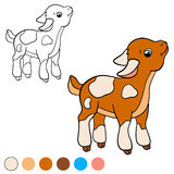 Página da coloração Colora-me: cabra Cabra bonito pequena do bebê Fotos de Stock