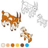 Página da coloração Colora-me: cabra Cabra do pai com sua cabra do bebê Imagens de Stock Royalty Free