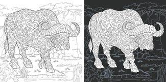 Página da coloração com búfalo ilustração stock