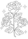 Página da coloração de Rosa Imagem de Stock Royalty Free