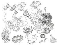 Página da coloração Ecossistema do recife de corais com os habitantes marinhos diferentes ilustração stock