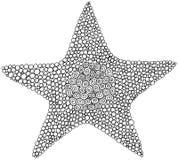 Página del colorante de la estrella del garabato para los adultos y los niños Círculo ornament libre illustration