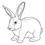 Página del colorante del conejo